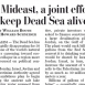 Joint Effort to Save the Dead Sea