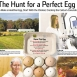 The Search for the Perfect Egg